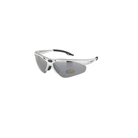 XLC Tahiti SG-C02 Bike Glasses silver